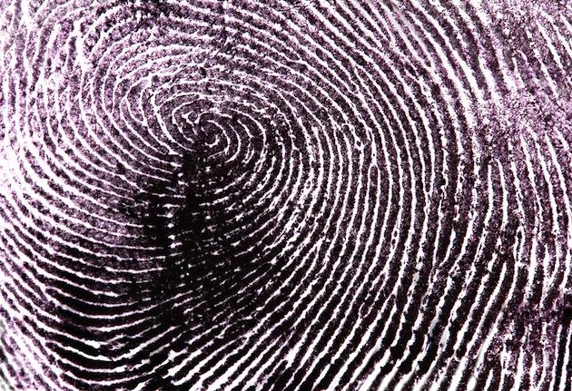 Fingerprint As A Labyrinth