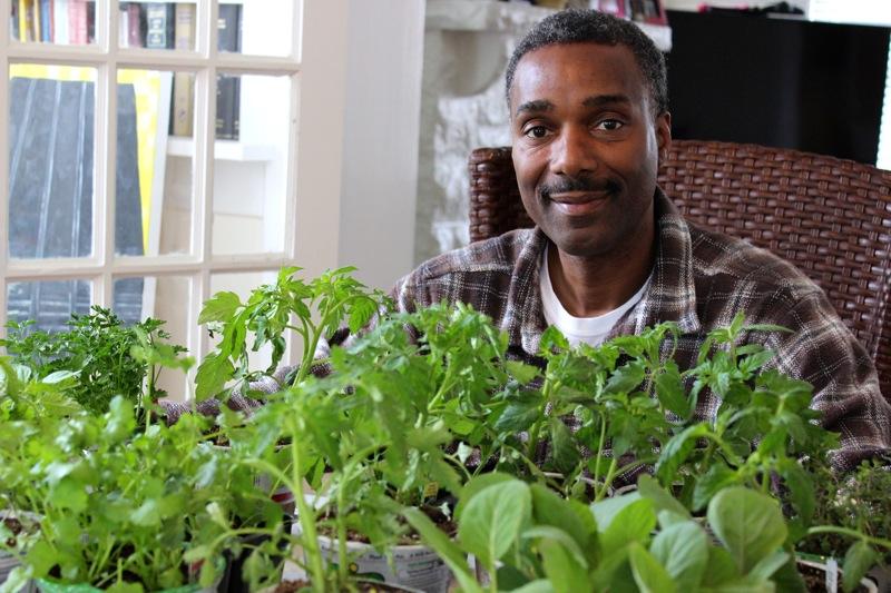 Olatushani's seedlings